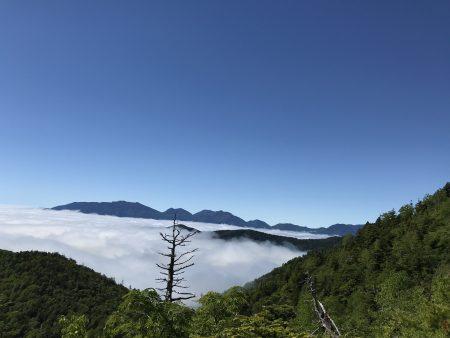 山上湿原に咲く高山植物を訪ねる。南会津の田代山‼️