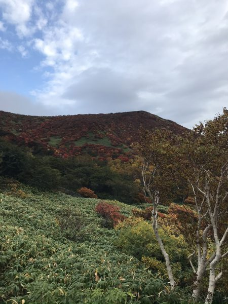 錦秋の頃、那須の峰々は山肌が真っ赤に染まっていました。